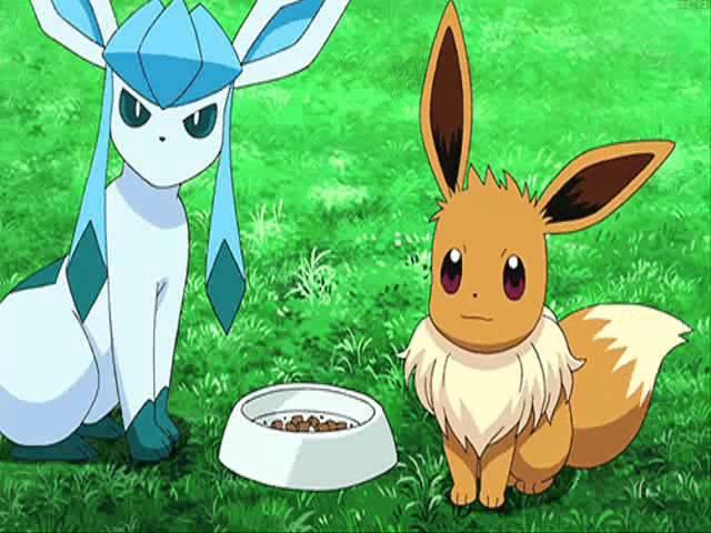 Pokemon Eevee Evolution AMV: Timber