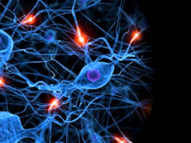 Активация и балансировка обоих полушарий мозга » Freewka.com - Смотреть онлайн в хорощем качестве