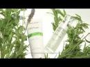 ВНИМАНИЕ! НОВИНКА BioPhyto – 100%-ный натуральный ботанический ПИЛИНГ для общего улучшения состояния кожи. В основе препаратов лежит уникальная комбинация лечебных трав, фруктовых кислот, минералов и витаминов, которая значительно улучш