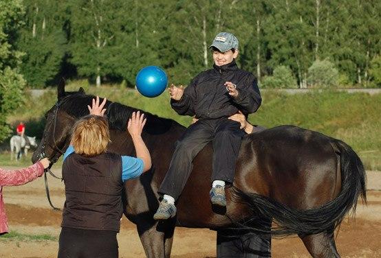 конного спорта» (НФ ЛВЕ
