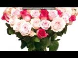 Со стены (Самые красивые в мире розы ) под музыку Догма - прости меня. Picrolla