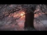 Uttara Kuru Winter Dance