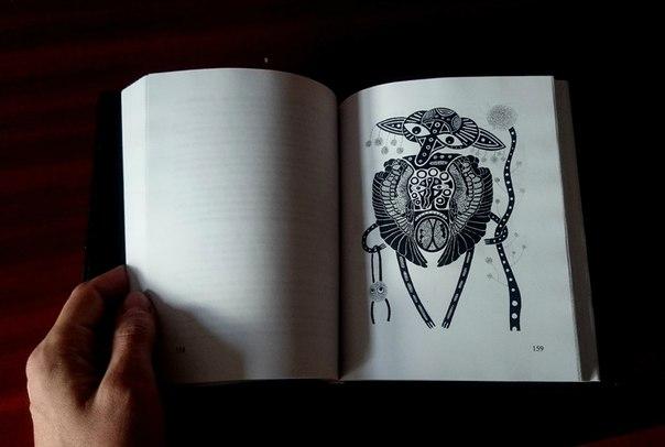 Иллюстрация Дарьи Чуботиной