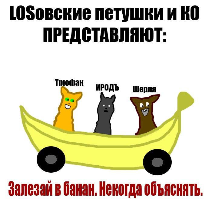 http://cs621629.vk.me/v621629858/1591e/6eilC-kddXA.jpg