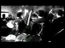 DJ Shantel feat Orkestar Bobana Markovica Bucovina Club