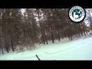 Охота на кабана в зимний период видео