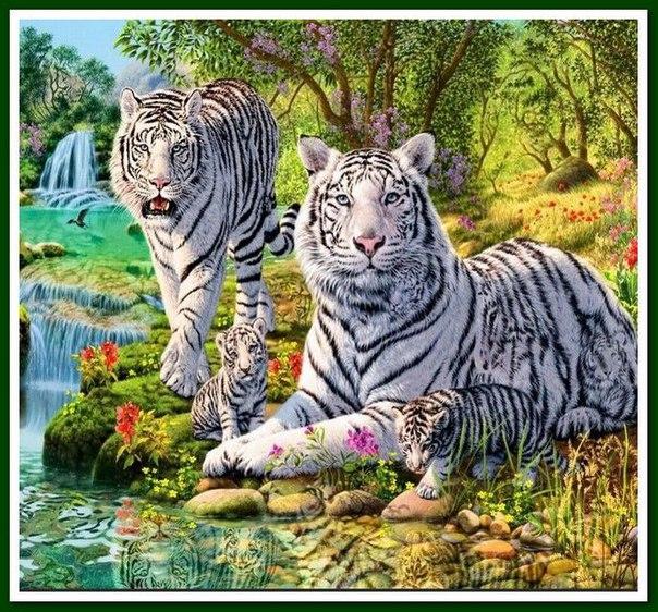 Семья белых тигров - алмазная