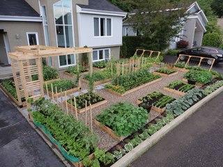 Компактный дизайн сад огород