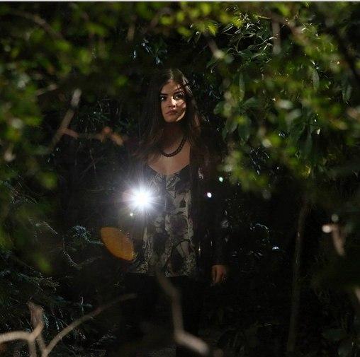 Что делает ария ночью в лесу фото с