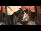 Пограничный пес Алый (1979) Полная версия