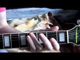 Duane Eddy - Rebel Rouser RnR Guitar lesson How to play Как Играть