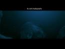 """Кэмерон Ричардсон (Cameron Richardson) голая в фильме """"Дрейф"""" (Open Water 2: Adrift, 2006, Ганс Хорн)"""