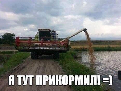 https://pp.vk.me/c621631/v621631804/1aa22/Goib3gg64Us.jpg