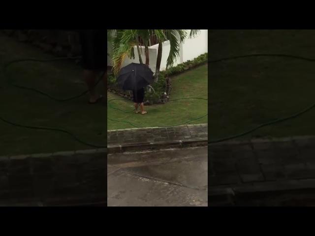 Женщина не в адеквате Поливает газон под дождем 😂в любую погоду .....