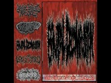 Brutal Decomposition - ''5 Ways Of Rotted Slow By Chronic Diseases ''