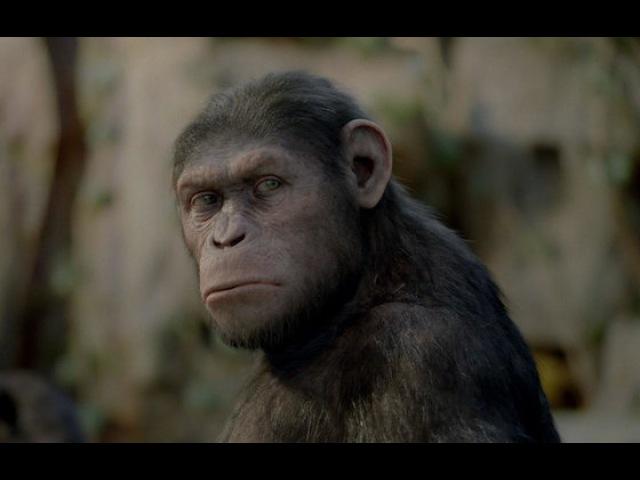 Видео к фильму «Восстание планеты обезьян» (2011): Международный трейлер №2 (дублированный)