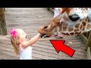 Смешные Дети против ЖИВОТНЫХ В зоопарке - ПОСТАРАЙСЯ НЕ СМЕЯТЬСЯ