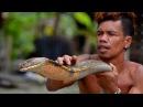 ►99 Люди в Ужасе бежали бы из Этого Места Бесстрашный Чувак выбирает Кобру как Рыбу на Рынке