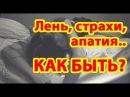 ✿ Действенный метод от ГРУСТИ, СТРАХА и ЛЕНИ ✿ Школа Кайлас Андрея Дуйко