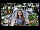 The Green Planet. Dubai - Воссозданные Леса Амазонки в Дубае