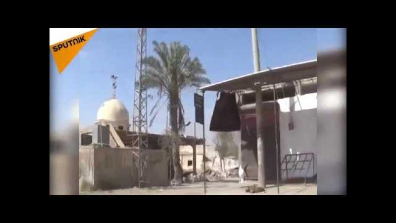 Штаб-квартира «Дааша» захвачена сирийской армией в Дейр-Эз-Зор
