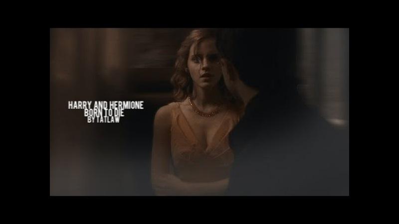 Harry Hermione Born To Die