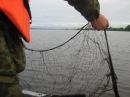 Крупная Ячея Для Местной Рыбы/В Поисках Сокровищ Викингов!