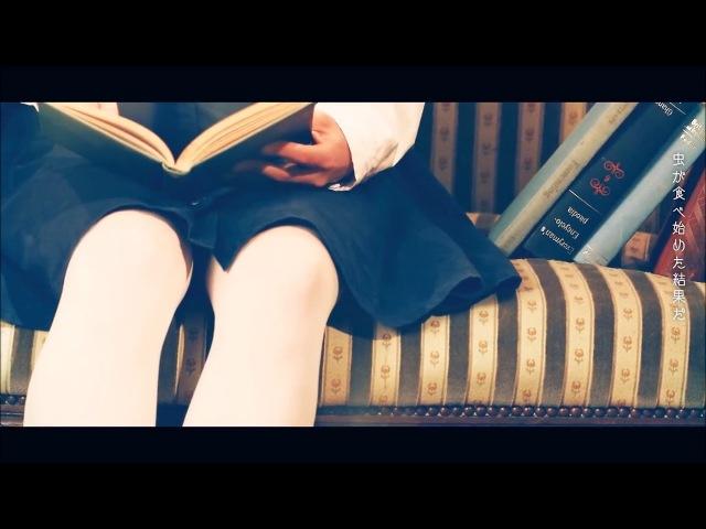 【Asane Hana】Fireworks Beneath My Shoes (short ver.)【UTAUカバー】 ust dl