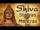 Vedic Chants  Shiva Stotras and Mantras  Shivratri Special
