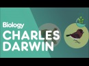 Charles Darwin's Observations Biology for All FuseSchool