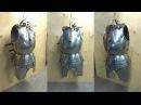 Миланская кираса. Сборка торса / Milanese cuirass. The torso making