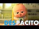 Despacito - Jefe en pañales Luis Fonsi and Daddy Yankee   Bebé bailando