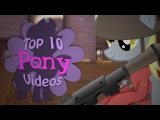 The Top 10 Pony Videos of February 2018