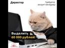 Требуется аккаунт менеджер в Московское интернет агентство