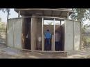 3 Индия 2018 Туалет В Индии Жесть на вокзале Уличная еда
