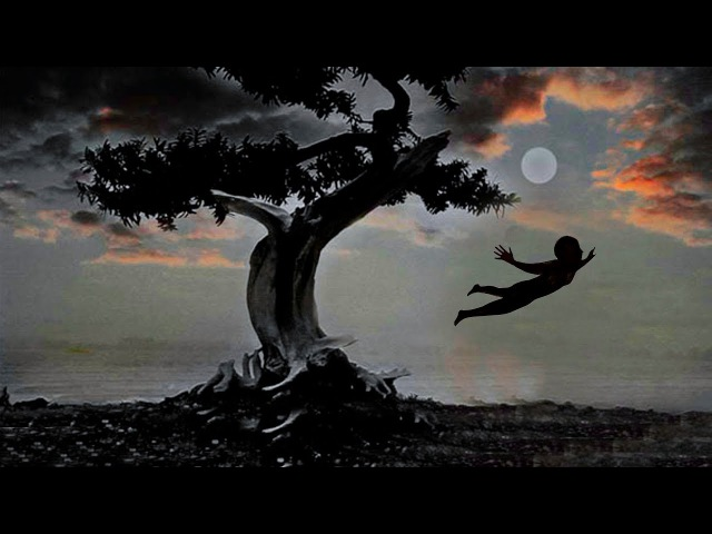 Dreams Best Enigmatic Collection (2017 Trilogy Shinnobu)
