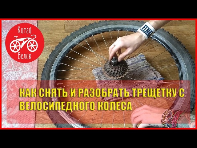 как снять трещетку с велосипедного колеса и разобрать её | CHINA BICYCLE | КИТАЙ ВЕЛИК