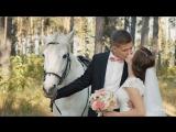 [Свадебный клип] Павел и Татьяна. Видеосъемка видеограф Липецк
