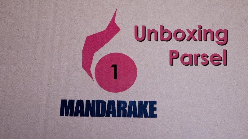 Unboxing parcel Mandarake № 28 (Nendoroid Linette 229)