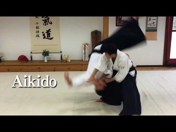 合気道 ‐ 横面打ち自由技 Aikido Yokomen Uchi in Hungary 02
