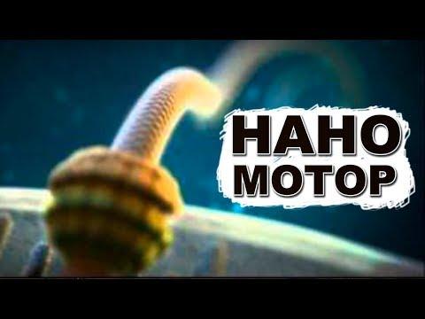 Кто встроил электромотор в бактерии? Выдает 100 000 об/мин!