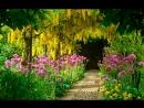 Энергетический сеанс Цветущий сад мыслеобраз красивого тела