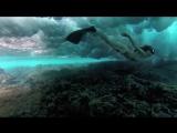 Красивое подводное видео. Девушки плавают с китами