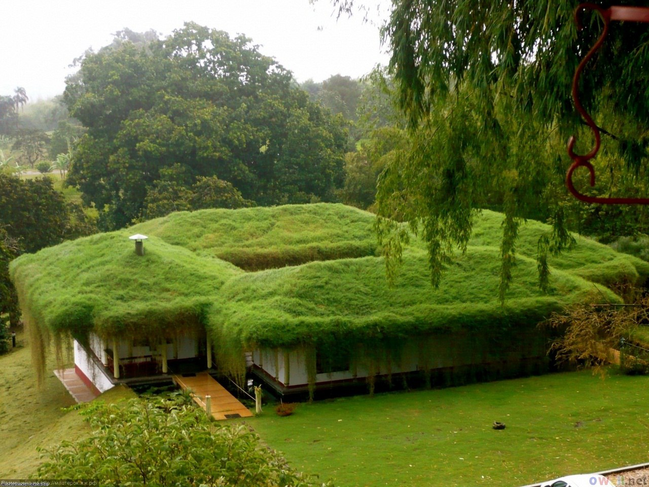 Зеленые крыши в Норвегии