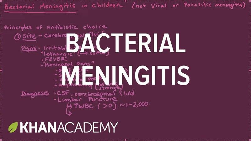 Bacterial meningitis | Miscellaneous | Heatlh Medicine | Khan Academy