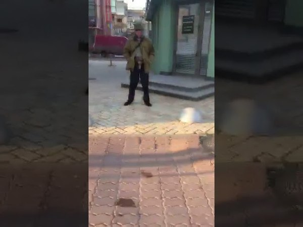 Ексгібіціоніст у Луцьку
