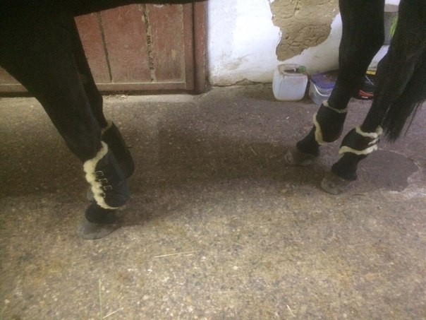 Продам ногавки, из натуральной кожи с гелем внутри. К ногавкам натурал
