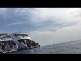 Яхта, красное море в его красе ?????