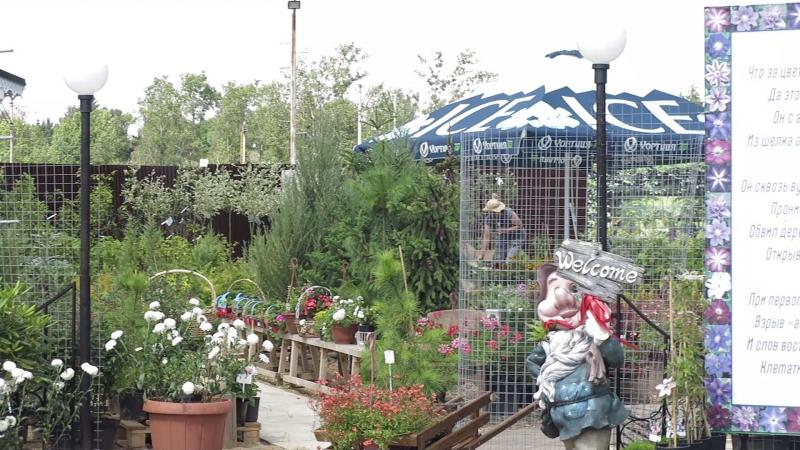 Садовый Бутик на Можайском шоссе, 31й км