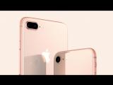 iPhone 8 и iPhone 8 Plus в «М.Видео»
